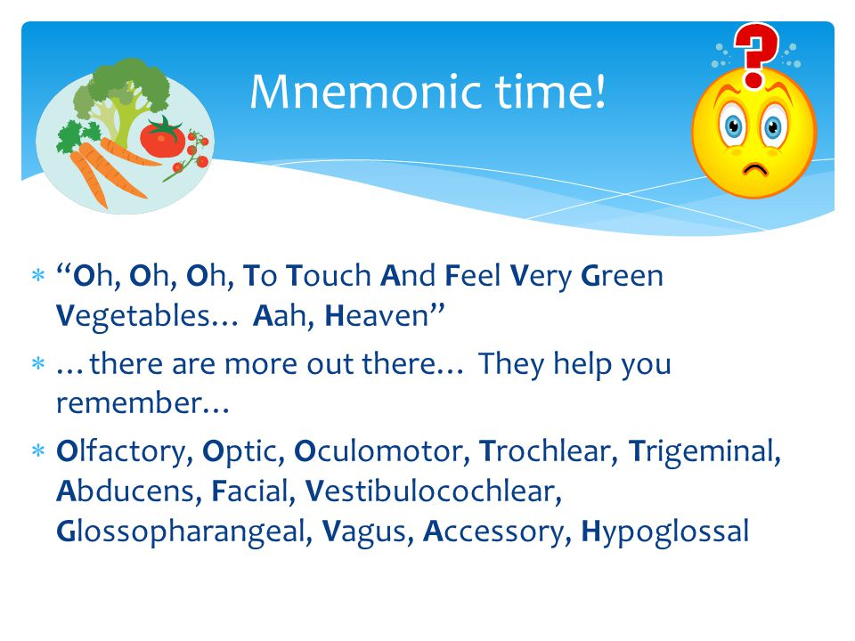  Oh, Oh, Oh, To Touch And Feel Very Green Vegetables… Aah, Heaven  …there are more out there… They help you remember…  Olfactory, Optic, Oculomotor, Trochlear, Trigeminal, Abducens, Facial, Vestibulocochlear, Glossopharangeal, Vagus, Accessory, Hypoglossal Mnemonic time!