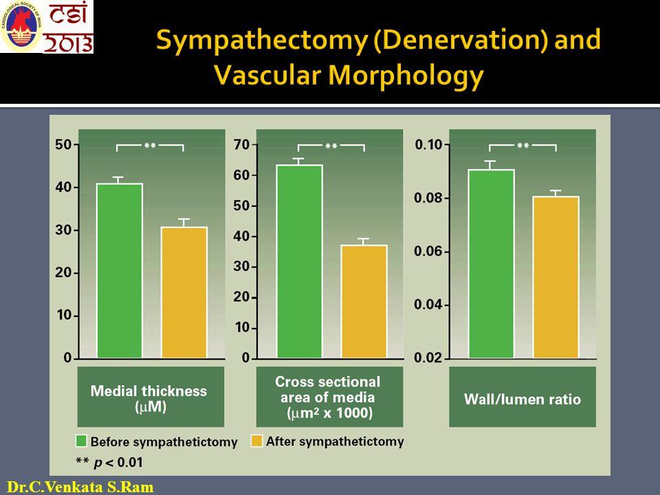  Innervated  Denervated J Appl Physiol 33: 649-655, 1972 Renal DNX : decreases renal renin content Dr.C.Venkata S.Ram