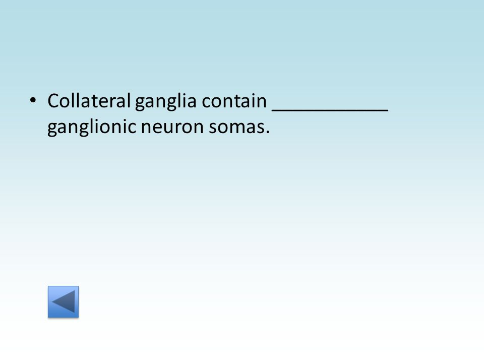 Collateral ganglia contain ___________ ganglionic neuron somas.