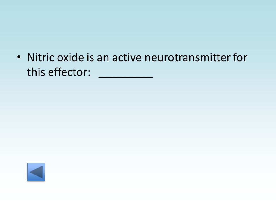 Nitric oxide is an active neurotransmitter for this effector: _________