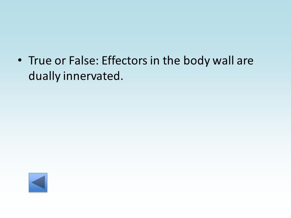 True or False: Effectors in the body wall are dually innervated.