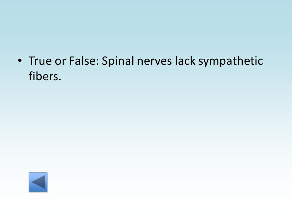 True or False: Spinal nerves lack sympathetic fibers.