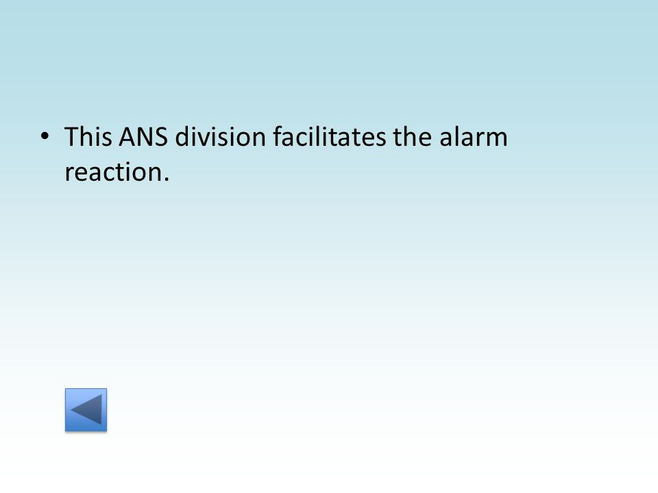 This ANS division facilitates the alarm reaction.