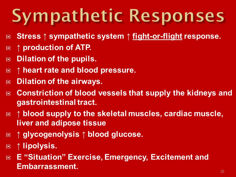  Stress ↑ sympathetic system ↑ fight-or-flight response.