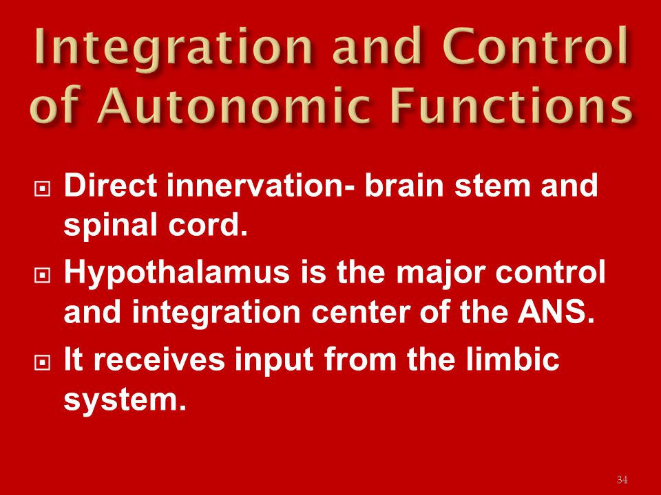  Direct innervation- brain stem and spinal cord.