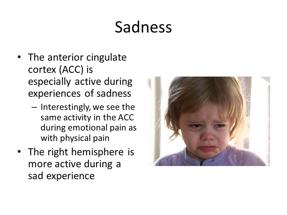Sadness The anterior cingulate cortex (ACC) is especially active during experiences of sadness – Interestingly, we see the same activity in the ACC during emotional pain as with physical pain The right hemisphere is more active during a sad experience