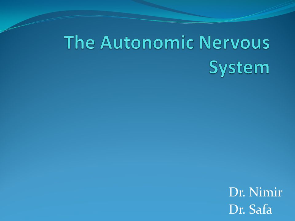 Objectives Review the subdivisions of the nervous system.