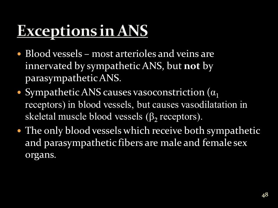Blood vessels – most arterioles and veins are innervated by sympathetic ANS, but not by parasympathetic ANS.