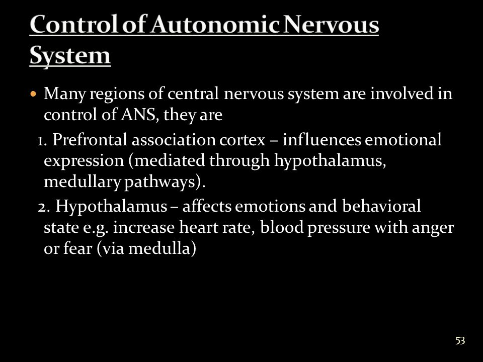 Many regions of central nervous system are involved in control of ANS, they are 1.