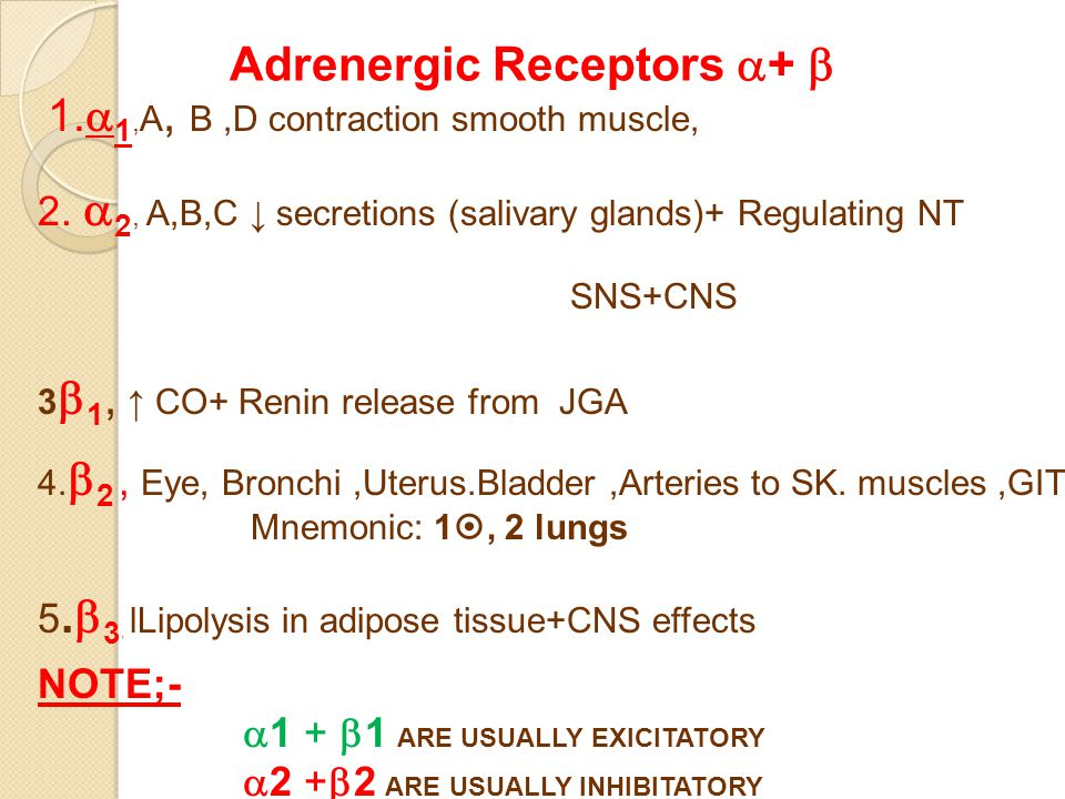Adrenergic Receptors  +  1.  1, A, B,D contraction smooth muscle, 2.