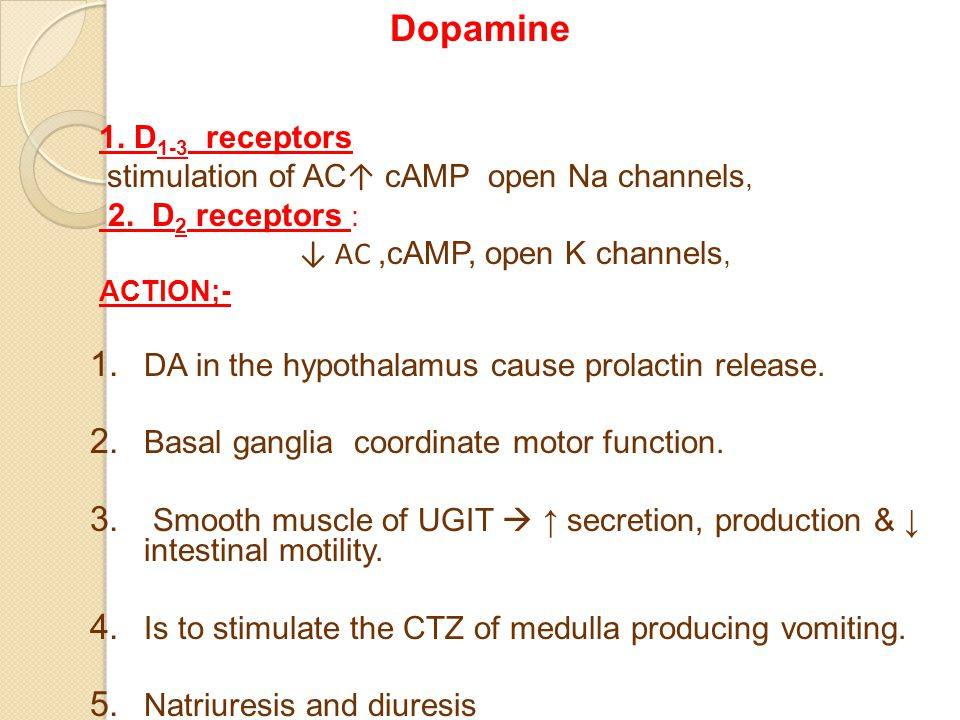 Dopamine 1. D 1-3 receptors stimulation of AC ↑ cAMP open Na channels, 2.