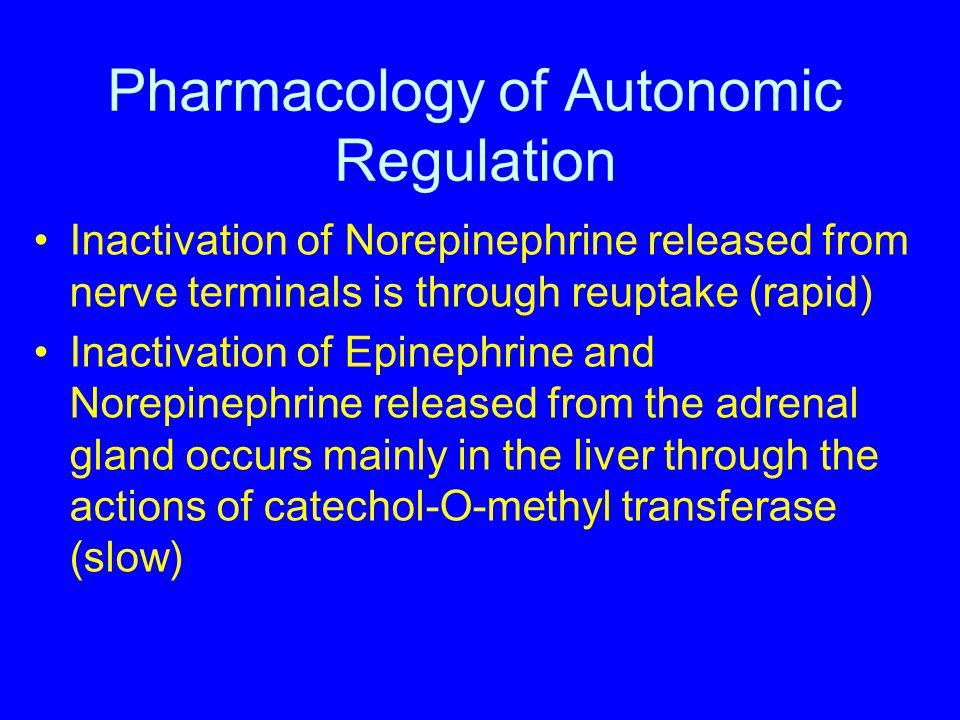 Pharmacology of Autonomic Regulation