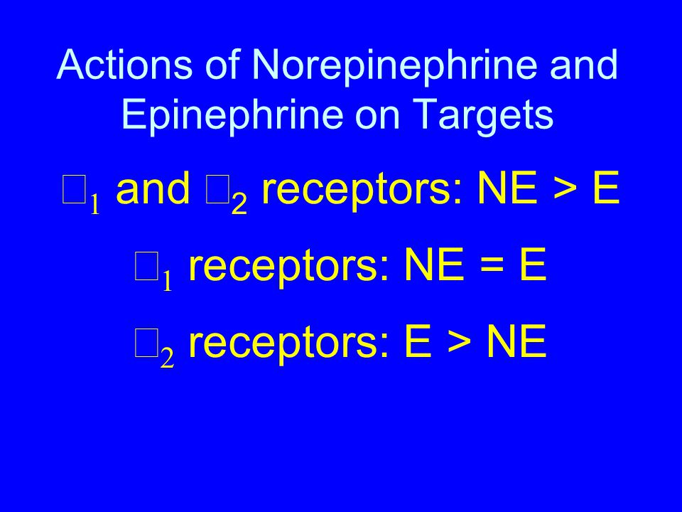 Actions of Norepinephrine and Epinephrine on Targets Example of G-Protein Mediated Second Messenger Production