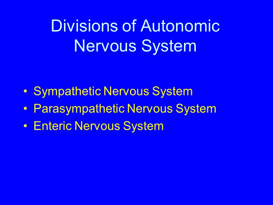 Drugs that Affect Autonomic Neurotransmission Drugs that potentiate transmitter action at synaptic terminals Ephedrine, Amphetamine potentiate NE release Neostigmine inhibits acetylcholinesterase action Drugs that prevent neurotransmitter release Reserpine prevents synthesis and storage of NE Guanethidineprevents NE release from nerve terminals