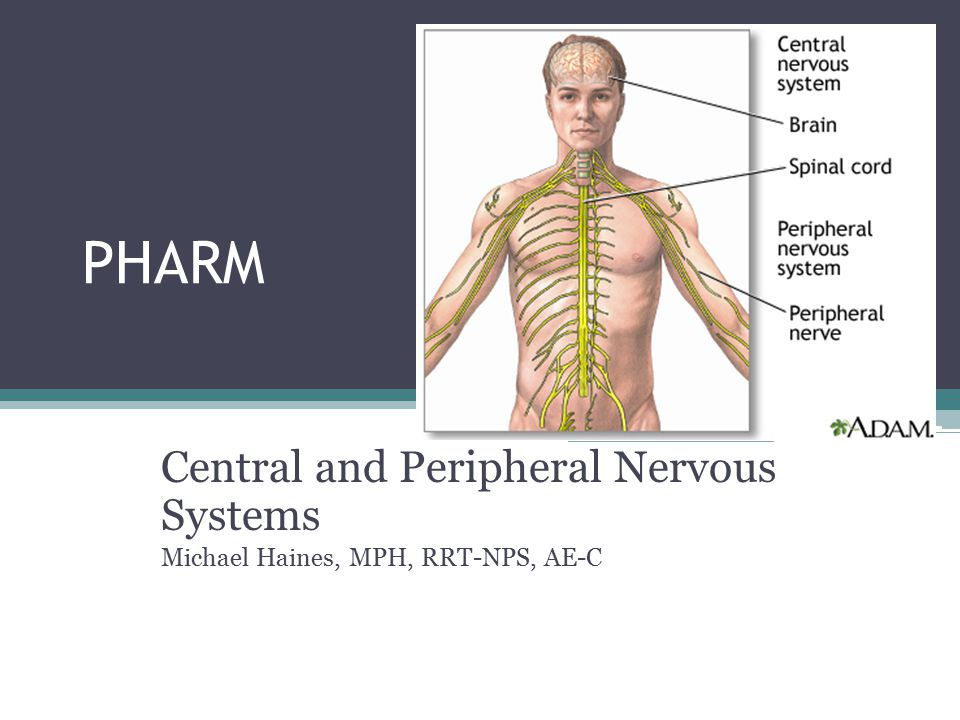 PHARM Central and Peripheral Nervous Systems Michael Haines, MPH, RRT-NPS, AE-C