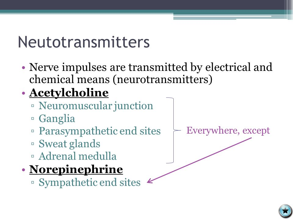 Neutotransmitters Nerve impulses are transmitted by electrical and chemical means (neurotransmitters) Acetylcholine ▫Neuromuscular junction ▫Ganglia ▫Parasympathetic end sites ▫Sweat glands ▫Adrenal medulla Norepinephrine ▫Sympathetic end sites Everywhere, except