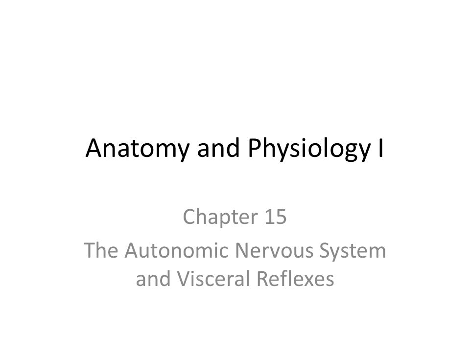 Anatomy and Physiology I Chapter 15 The Autonomic Nervous System and Visceral Reflexes