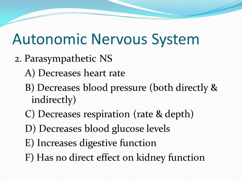 Autonomic Nervous System 2.
