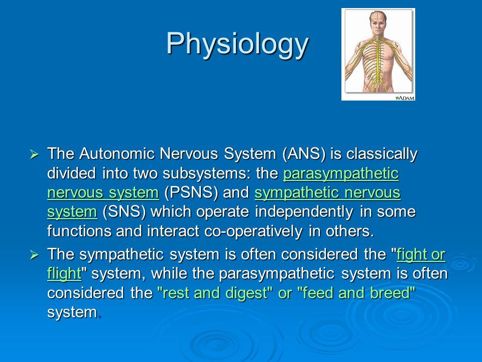 Physiology  The Autonomic Nervous System (ANS) is classically divided into two subsystems: the parasympathetic nervous system (PSNS) and sympathetic