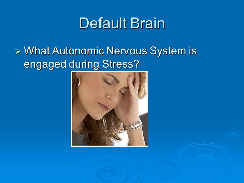 Default Brain  What Autonomic Nervous System is engaged during Stress