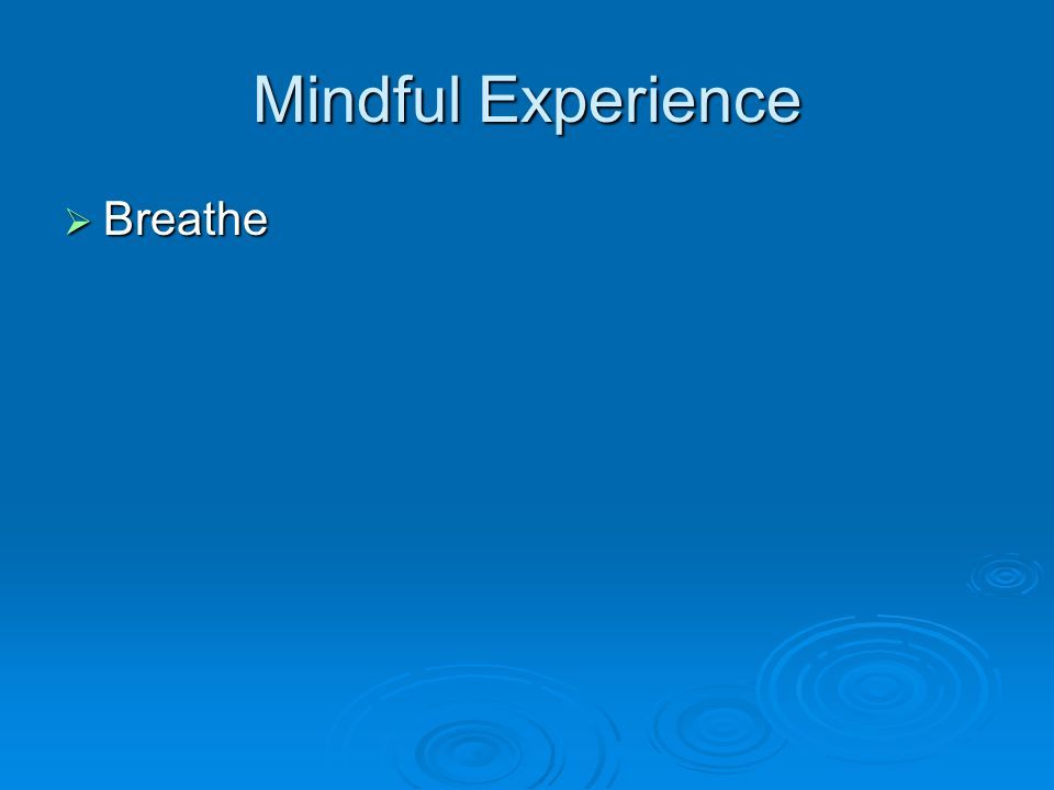 Mindful Experience  Breathe