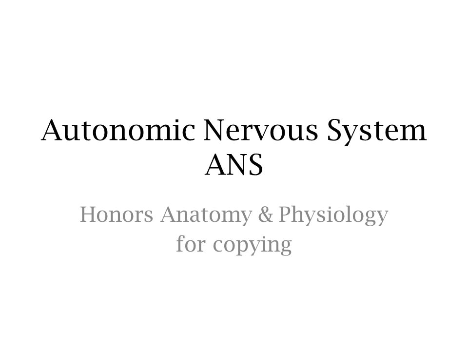 Autonomic Nervous System ANS Honors Anatomy & Physiology for copying