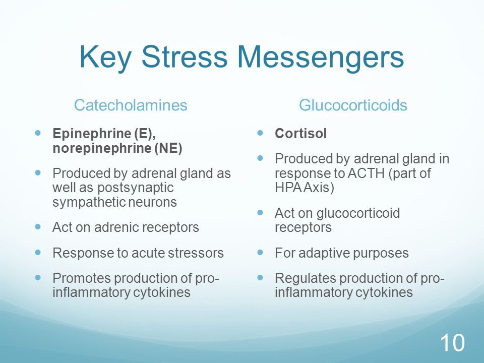 Key Stress Messengers Catecholamines Epinephrine (E), norepinephrine (NE) Produced by adrenal gland as well as postsynaptic sympathetic neurons Act on adrenic receptors Response to acute stressors Promotes production of pro- inflammatory cytokines Glucocorticoids Cortisol Produced by adrenal gland in response to ACTH (part of HPA Axis) Act on glucocorticoid receptors For adaptive purposes Regulates production of pro- inflammatory cytokines 10
