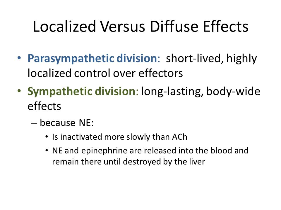 Localized Versus Diffuse Effects Parasympathetic division: short-lived, highly localized control over effectors Sympathetic division: long-lasting, bo