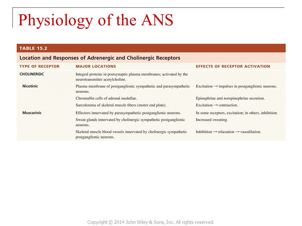 Physiology of the ANS Copyright © 2014 John Wiley & Sons, Inc. All rights reserved.