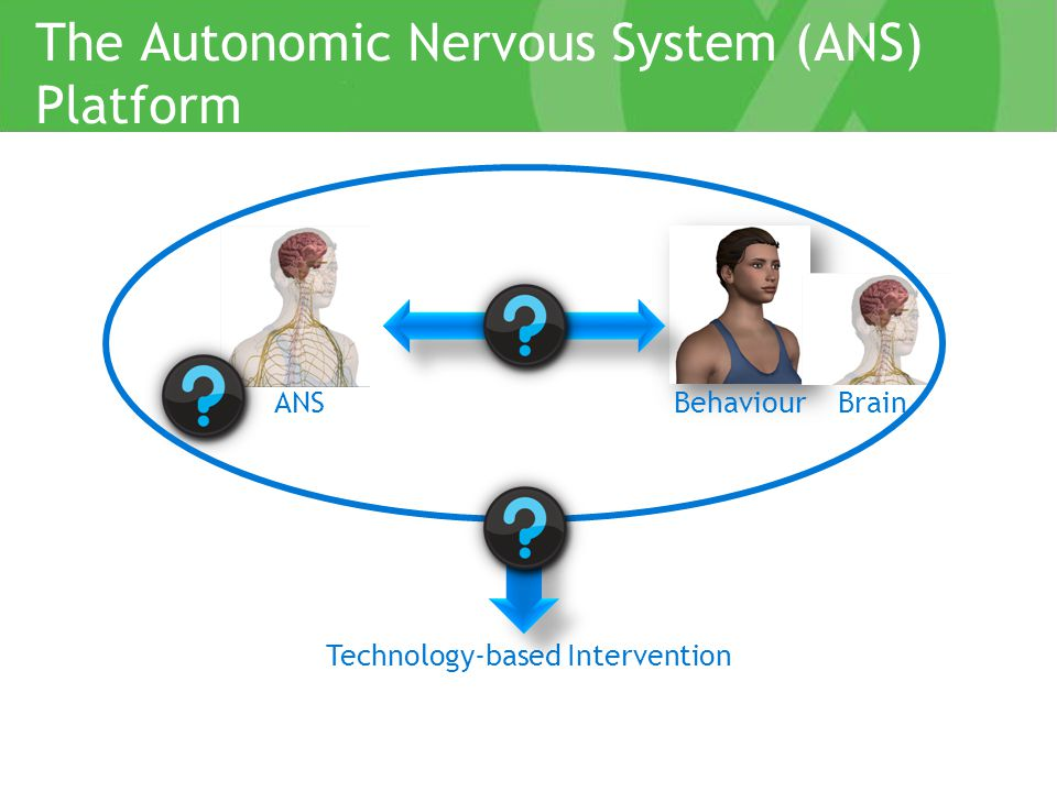 ANS parasympathetic innervation sympathetic innervation