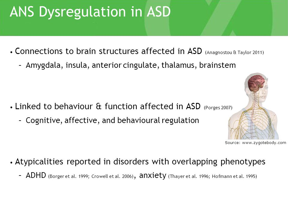 ANS Dysregulation in ASD Emerging evidence to support ANS hyper-arousal (Cheshire 2012; Ming et al.