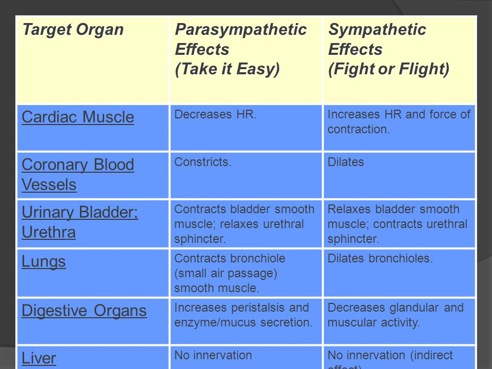 Target Organ Parasympathetic Effects (Take it Easy) Sympathetic Effects (Fight or Flight) Cardiac Muscle Decreases HR.Increases HR and force of contraction.