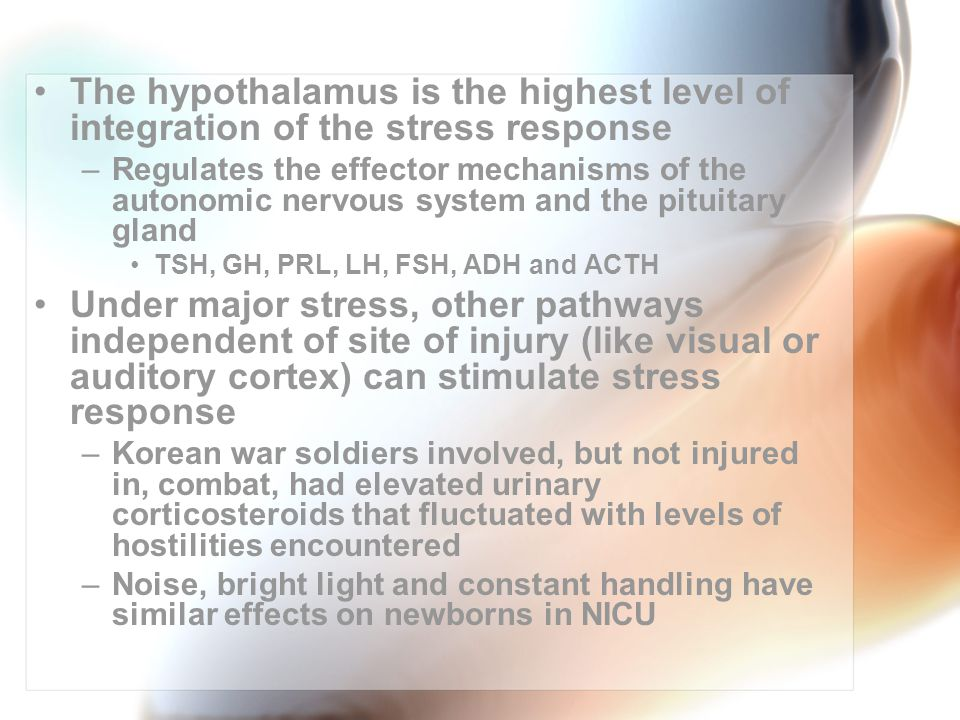 The hypothalamus is the highest level of integration of the stress response –Regulates the effector mechanisms of the autonomic nervous system and the pituitary gland TSH, GH, PRL, LH, FSH, ADH and ACTH Under major stress, other pathways independent of site of injury (like visual or auditory cortex) can stimulate stress response –Korean war soldiers involved, but not injured in, combat, had elevated urinary corticosteroids that fluctuated with levels of hostilities encountered –Noise, bright light and constant handling have similar effects on newborns in NICU