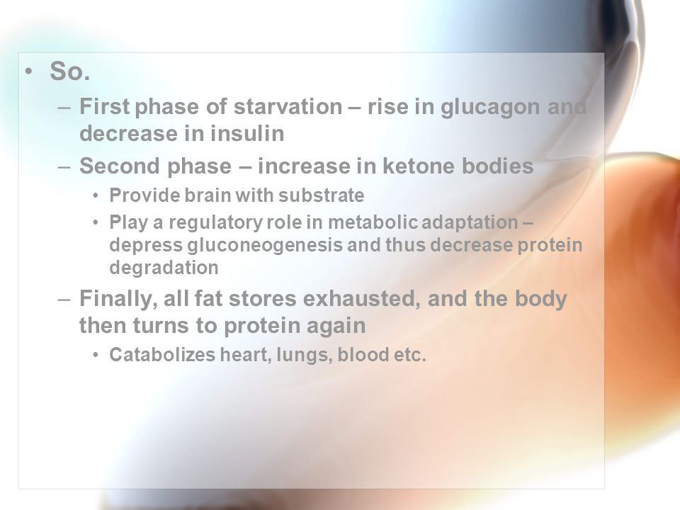 So. –First phase of starvation – rise in glucagon and decrease in insulin –Second phase – increase in ketone bodies Provide brain with substrate Play