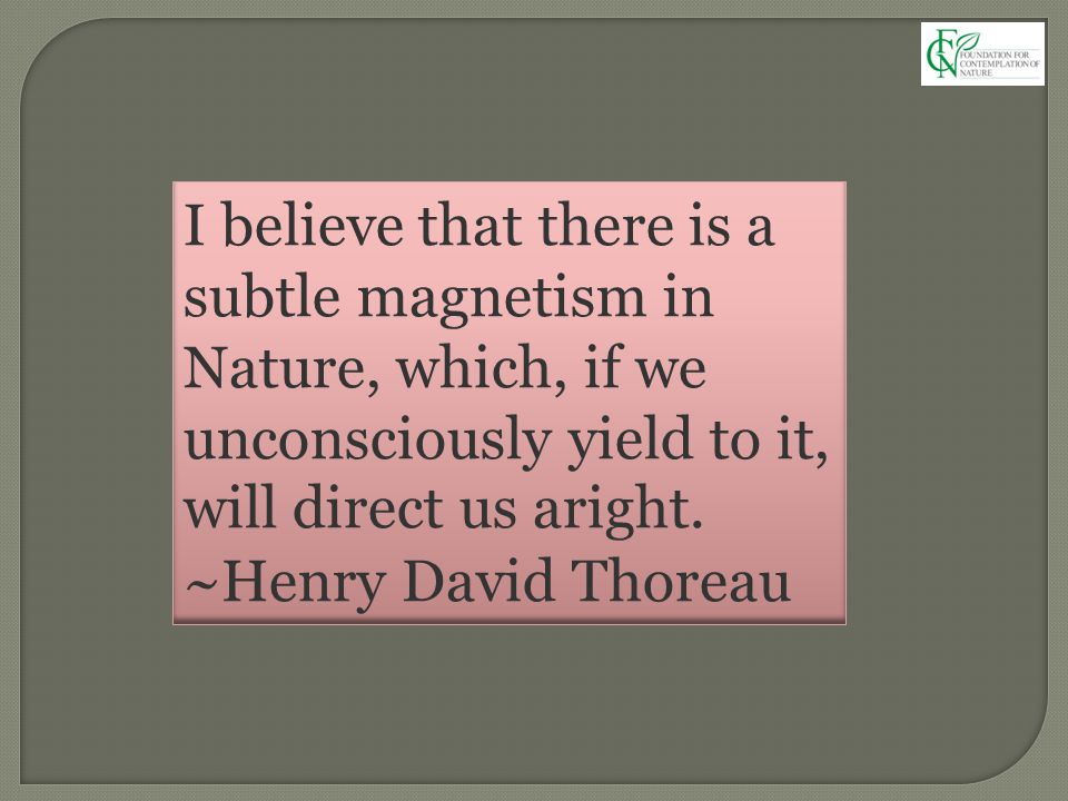 I believe that there is a subtle magnetism in Nature, which, if we unconsciously yield to it, will direct us aright. ~Henry David Thoreau