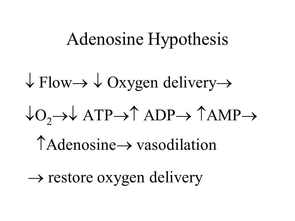 Adenosine Hypothesis  Flow   Oxygen delivery   O 2  ATP  ADP   AMP   Adenosine  vasodilation  restore oxygen delivery