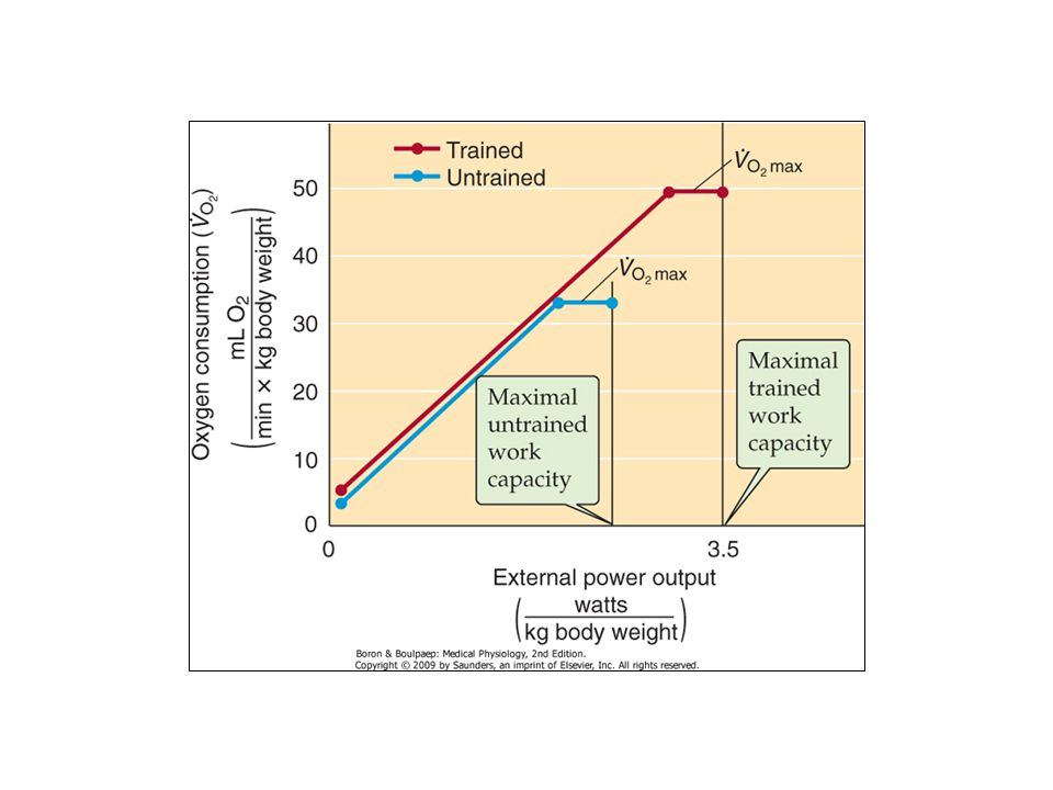 Figure 60-6 Dependence of VO2 on mechanical power output.