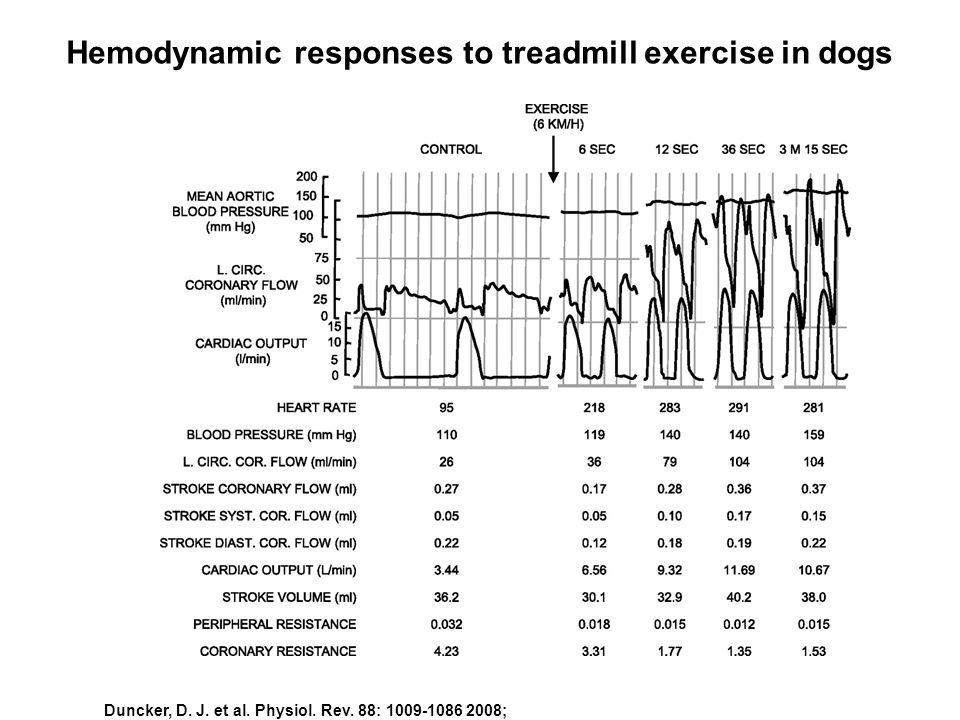 Duncker, D. J. et al. Physiol. Rev. 88: 1009-1086 2008; Hemodynamic responses to treadmill exercise in dogs