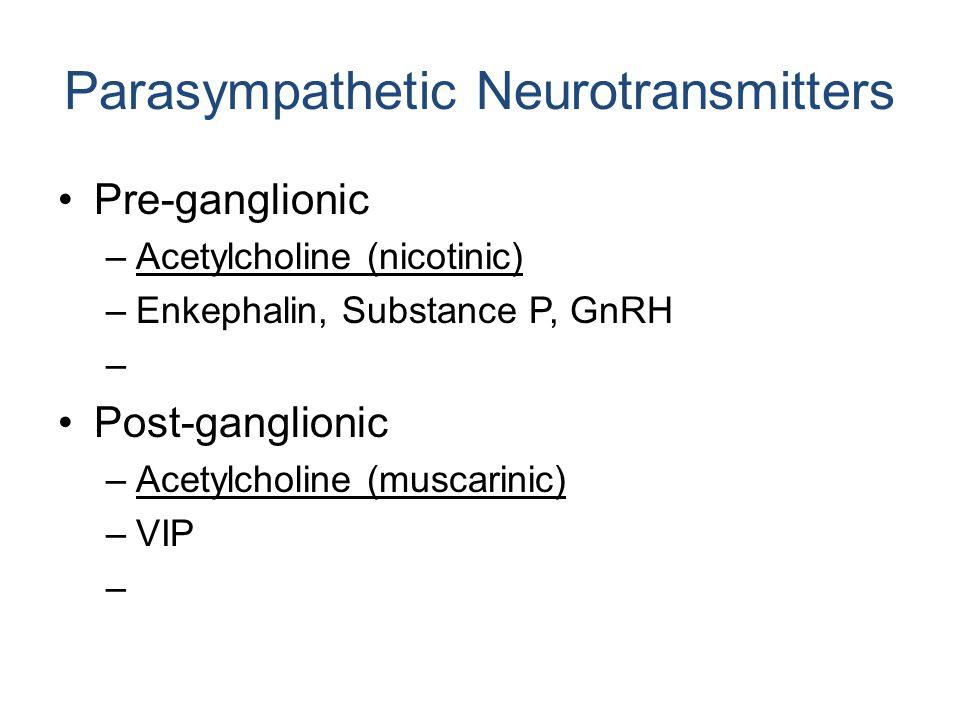 Parasympathetic Neurotransmitters Pre-ganglionic –Acetylcholine (nicotinic) –Enkephalin, Substance P, GnRH – Post-ganglionic –Acetylcholine (muscarinic) –VIP –
