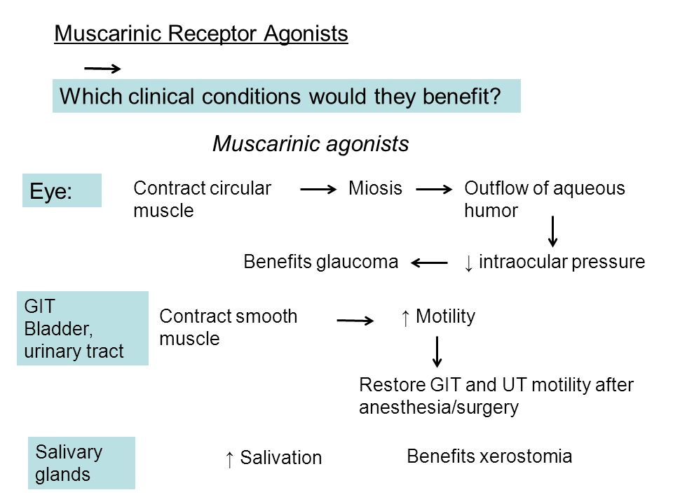 Muscarinic Receptor Agonists Which clinical conditions would they benefit? Eye: Muscarinic agonists Contract circular muscle MiosisOutflow of aqueous