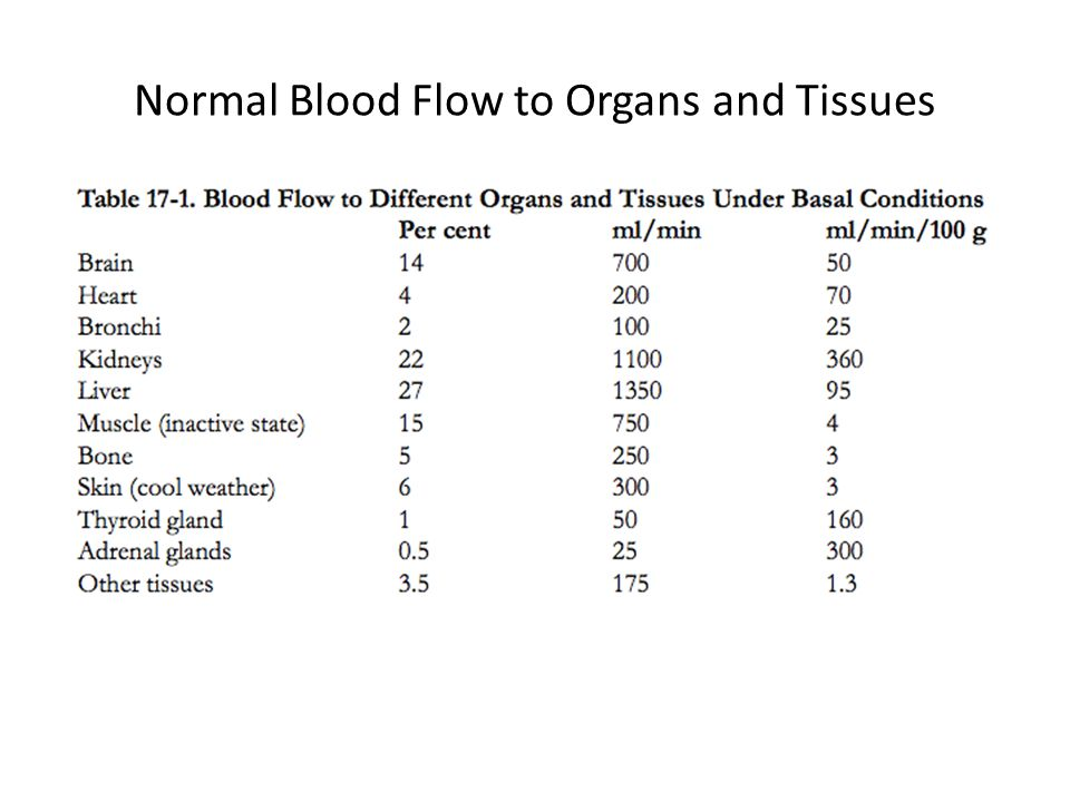 Changes in Blood Flow During Exercise