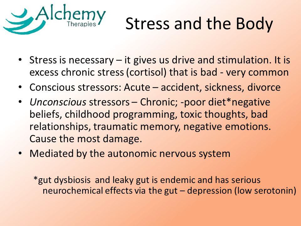 Autonomic nervous system The Mind and Body link PNSSNS