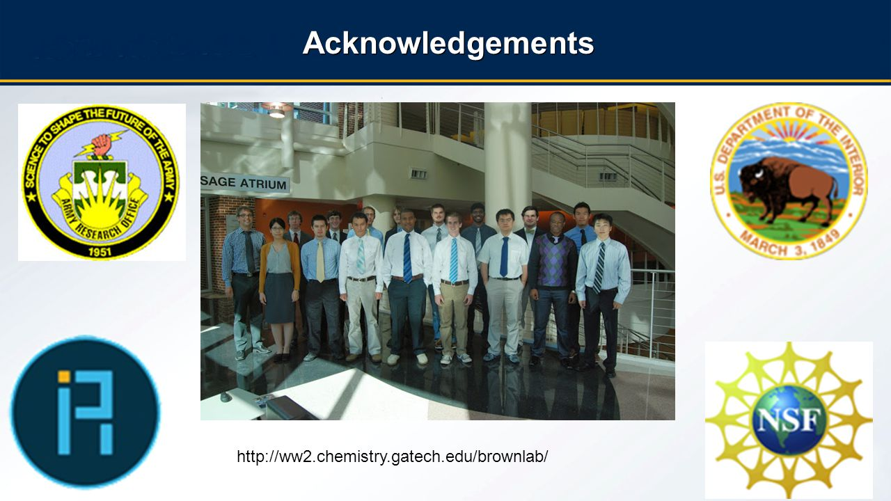 20 Acknowledgements http://ww2.chemistry.gatech.edu/brownlab/