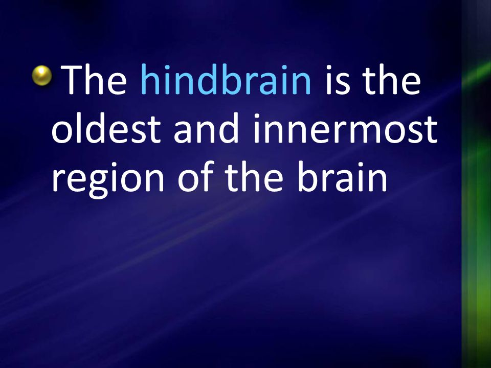 The hindbrain is the oldest and innermost region of the brain