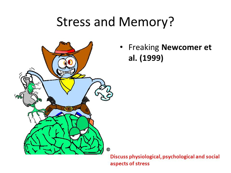 Stress and Memory? Freaking Newcomer et al. (1999) Discuss physiological, psychological and social aspects of stress