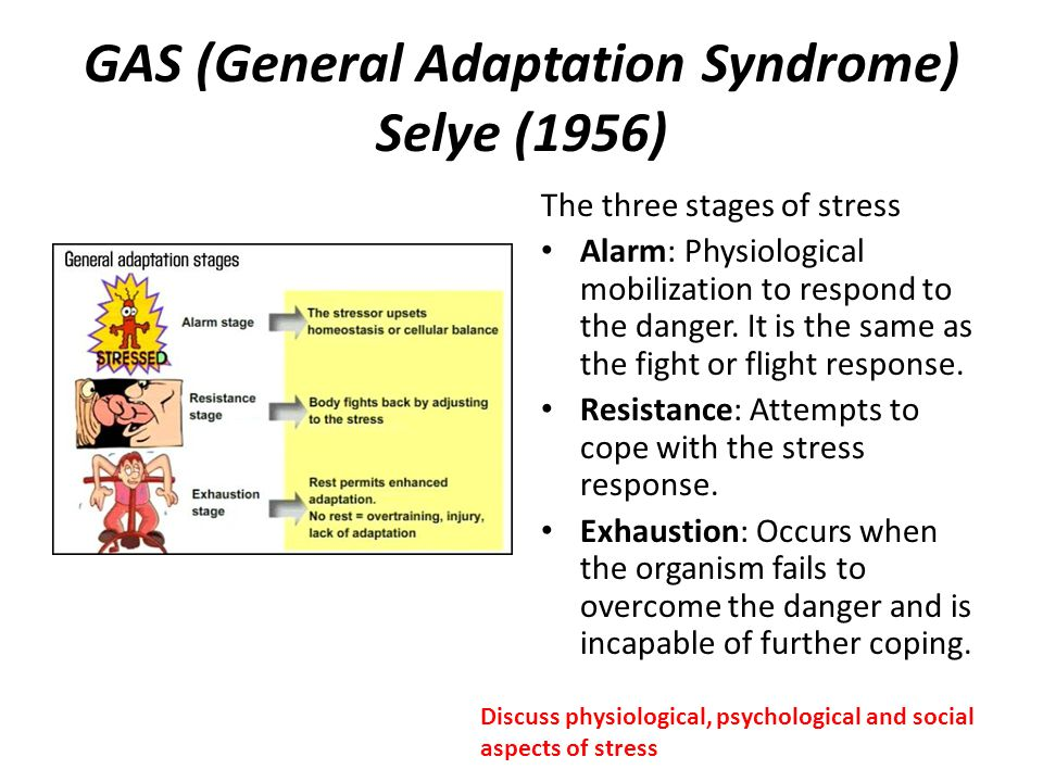 GAS (General Adaptation Syndrome) Selye (1956) The three stages of stress Alarm: Physiological mobilization to respond to the danger. It is the same a