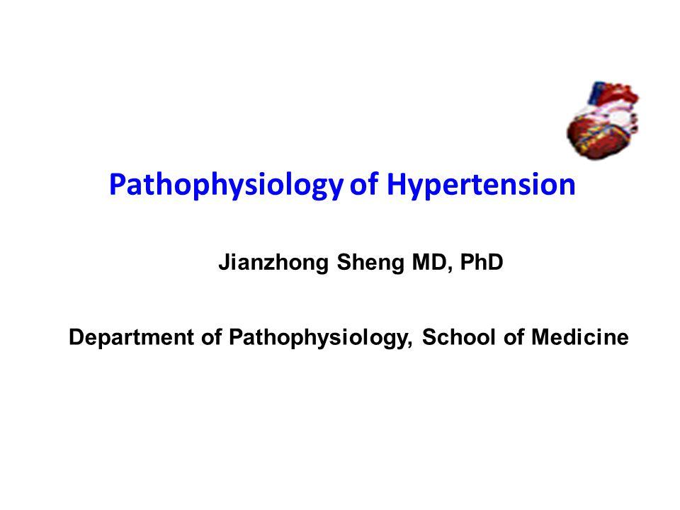 Pathophysiology of Hypertension Jianzhong Sheng MD, PhD Department of Pathophysiology, School of Medicine
