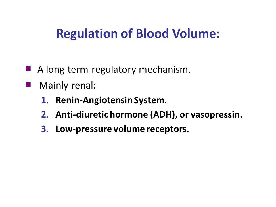 Regulation of Blood Volume: ■ A long-term regulatory mechanism.
