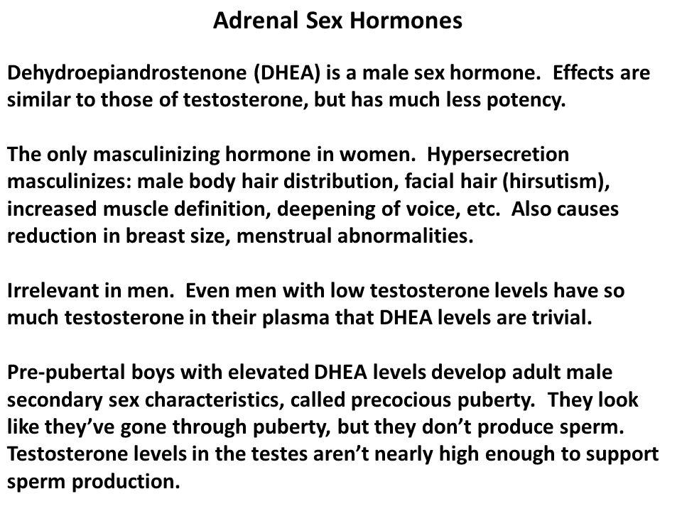 Adrenal Sex Hormones Dehydroepiandrostenone (DHEA) is a male sex hormone.