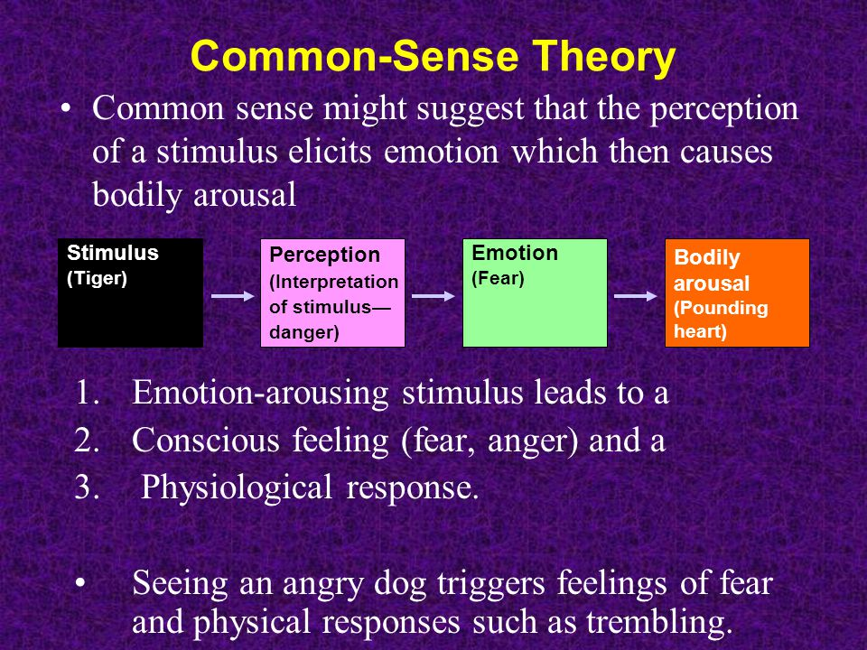 Common-Sense Theory Common sense might suggest that the perception of a stimulus elicits emotion which then causes bodily arousal Perception (Interpre